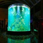 фарфор қымбат емес супер үлкен дөңгелек пьюмма шыны аквариумы мөлдір цилиндрлік акрилді балық цистерналары
