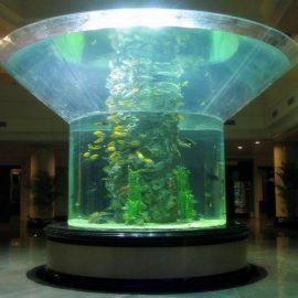 pmma шыны аквариумының жарты цилиндрі болашақта ашық балық аулаушы