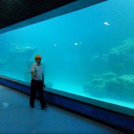 Аквариумға / океанариумға арналған балқытылған УК-акрил панелі