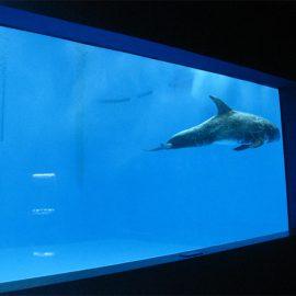 жоғары сапалы акрил аквариумы / бассейн терезесі асты қалың терезелер парағы