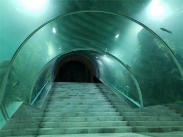 Акрилді тоннель аквариумының жобалық бағасы