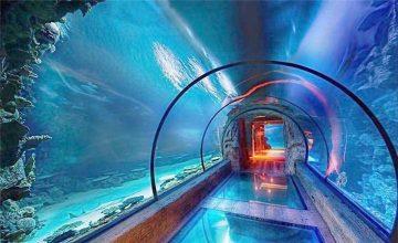 Акрилді аквариумның ұзын тонналы дизайны